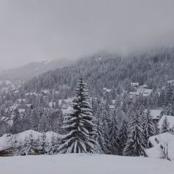 Swiss Ski Resorts Open